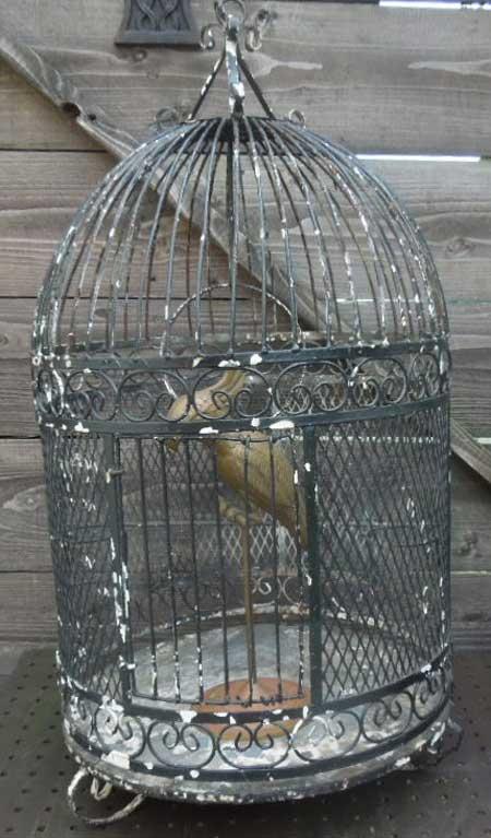 Antique Used Bird Cage 1950年代の鳥カゴ